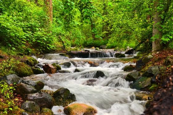 chelan creek